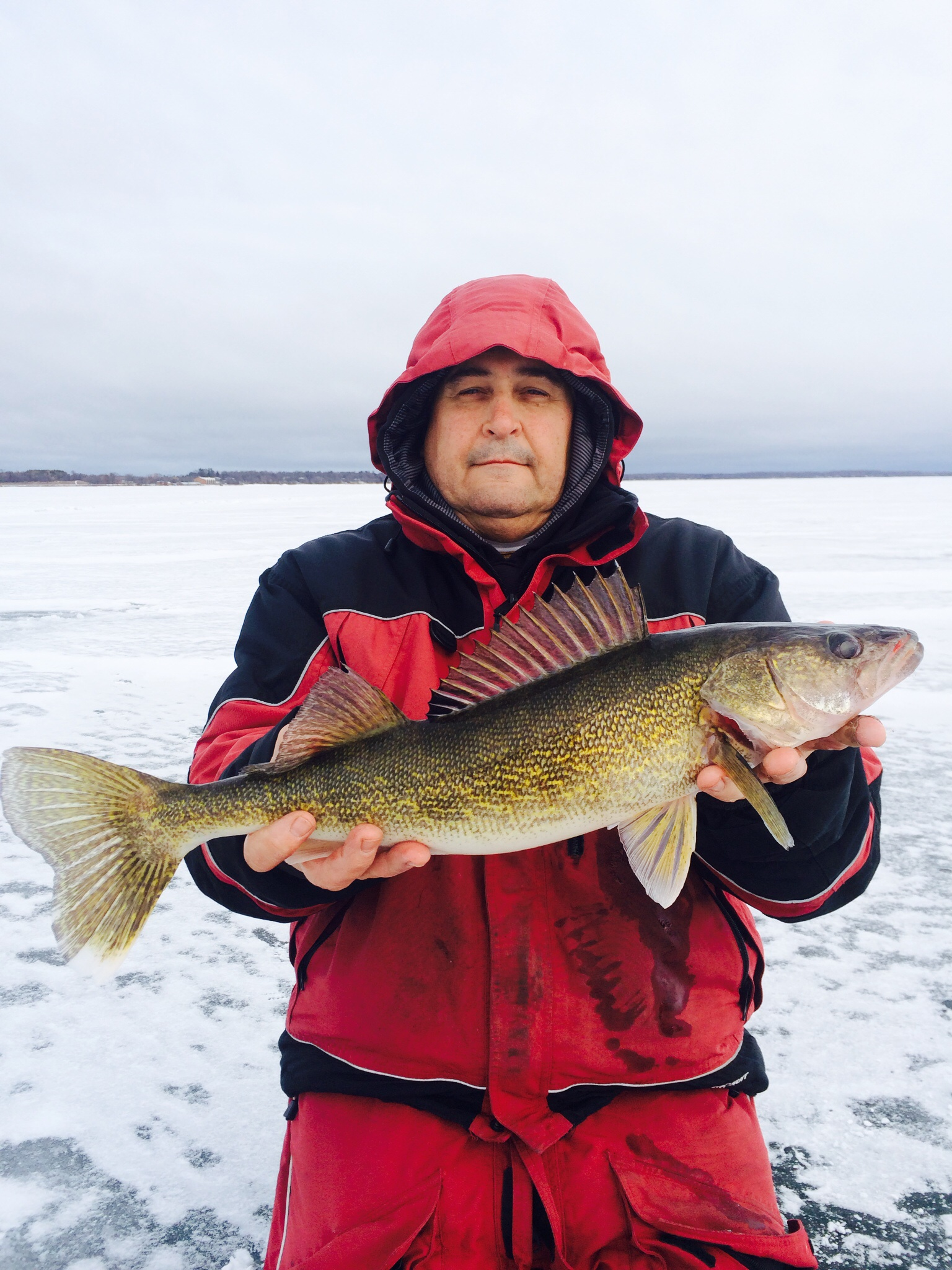 Mille lacs jumbo perch hot girls wallpaper for Ice fishing tournaments mn 2017