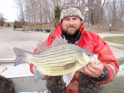 World record yellow bass in lake mendota madison chain for Wi fishing regs