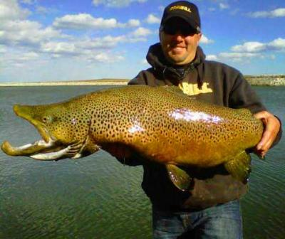 Brown trout milwaukee harbor fishing reports in depth for Milwaukee river fishing report